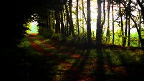 Tunnel till och med träd Arkivfoto