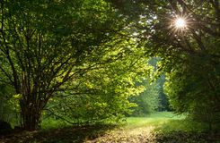 Tunnel till solen Arkivbilder