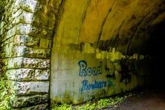 Tunnel to road to nowhere at lakeshore trailhead near lake fonta Stock Photos