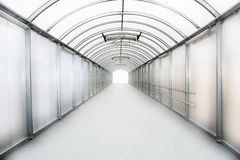 Free Tunnel To The Future Stock Photo - 10117910