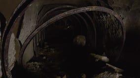 A tunnel underground. A medium shot of a tunnel underground stock footage