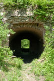 Tunnel underpass. A underpass, catacomb in the forrest Royalty Free Stock Photography