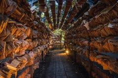 Tunnel van Ema stock foto's