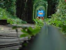 Tunnel van liefde stock foto's