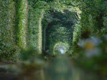 Tunnel van liefde stock foto