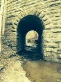 Tunnel van Vogels Royalty-vrije Stock Afbeeldingen