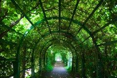 Tunnel vert Image libre de droits