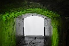 Tunnel vert Images libres de droits