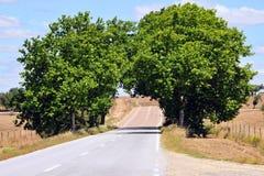 Tunnel vert Photos libres de droits