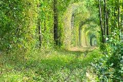 Tunnel von Bäumen versteckt die alte Bahnlinie Im Abstand können Sie das Schattenbild eines einsamen Mädchens im Rot sehen Stockfotos