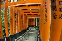 Tunnel von Torii-Toren Stockbild
