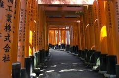 Tunnel von Torii-Toren Lizenzfreie Stockfotos