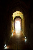 Tunnel in Wat Umong Royalty Free Stock Images
