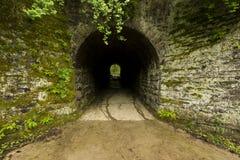 Tunnel zum Holz Stockfoto