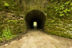 Tunnel zum Holz Stockbilder