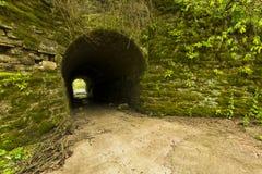 Tunnel zum Holz Lizenzfreie Stockbilder