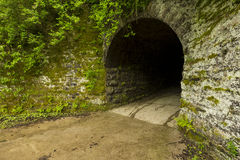 Tunnel zum Holz Lizenzfreie Stockfotos