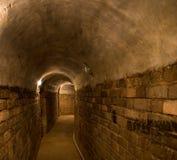 Tunnelbanan jagar arkivfoton