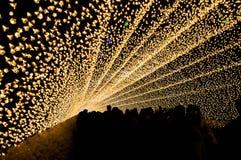 Tunnelen av ljus i Nabana ingen Sato trädgård på natten i vinter, Arkivbilder