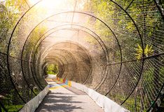 Tunnelljus och natur Royaltyfria Bilder