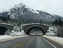 Tunnels de montagne Images stock