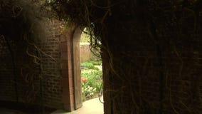 Tunnels in the secret garden. Video of tunnels in the secret garden stock footage