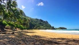 Tunnelstrand Kauai Arkivfoton