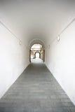 tunnelwhite Arkivbilder