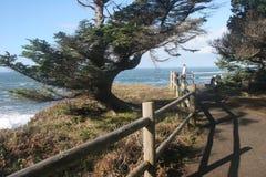 tunnland förbiser kusten Royaltyfri Fotografi