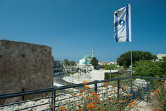 tunnlandakko israel arkivfoto