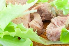 Tunny and salad Stock Photography