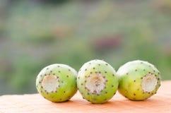 Tunos. A nice trio of white nopal Stock Photos