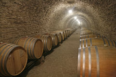 Tuns with wine stock photography