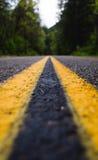 Tunt fokuserad blytak för en väg in i en frodig skog Fotografering för Bildbyråer