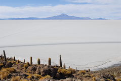 Tunupa Salt Flats Royalty Free Stock Images