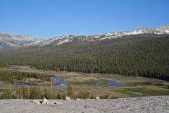 Tuolumne łąki, Tioga przepustka, Yosemite Zdjęcia Royalty Free