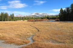 Tuolumne Meadows Royalty Free Stock Photography