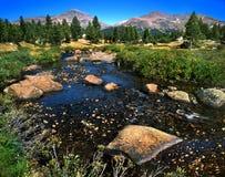 Tuolumne Meadows. A Quiet, Stream Running Through Tuolumne Meadows, Yosemite National Park, California stock photography