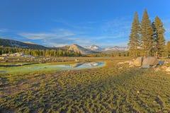 Tuolumne Meadows. Landscape of Tuolumne Meadows and Sierra Nevada Mountains, Yosemite National Park, California, USA royalty free stock photography