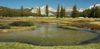 Tuolumne Meadows, Yosemite. Tuolumne Meadows in Yosemite high country in spring, captured in Yosemite National Park in California Stock Photography