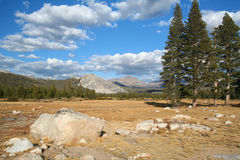 Tuolumne Meadows at the Yosemite National Park Stock Photography