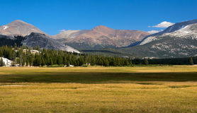 Tuolumne meadows Royalty Free Stock Images