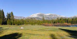 Tuolumne Meadows, Yosemite Park. Landscape of Tuolumne Meadows and Sierra Nevada Mountains, Yosemite National Park, California, USA stock photos
