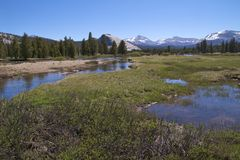 Tuolumne River at Soda Springs, Yosemite NP Royalty Free Stock Photos