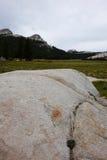 Tuolumne Wiese - Yosemite Stockbild