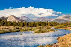 Tuolumne-Wiesen, Yosemite Nationalpark, Kalifornien Lizenzfreies Stockfoto