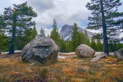 Tuolumneweiden en Lembert-Koepel in het Nationale Park van Yosemite californi? De V.S. stock afbeeldingen
