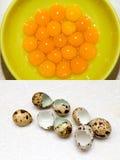 Tuorli delle uova di quaglia Fotografia Stock