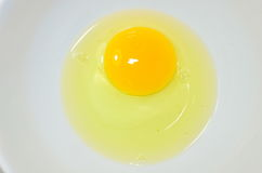 Tuorlo d'uovo Immagine Stock Libera da Diritti