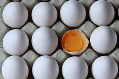 Tuorlo fra molte uova bianche Immagine Stock